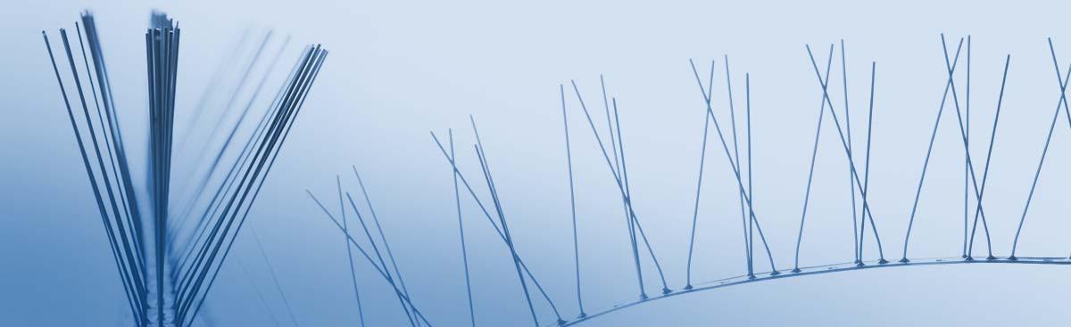 Obrázok hlavičky produktu - Bird barriers | vomet.sk